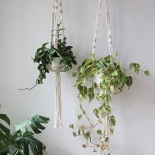 Give me macrame and plants forever